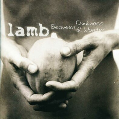Аудио диск Lamb - Between Darkness And Wonder