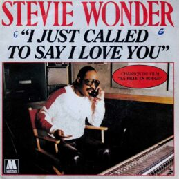 Виниловая пластинка Stevie Wonder - I Just Called To Say I Love You